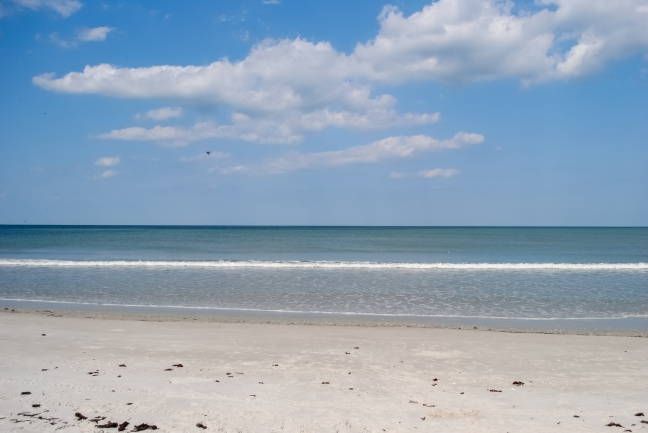 Cocoa_Beach_Horizon_PLC-BE-CB-6.jpg